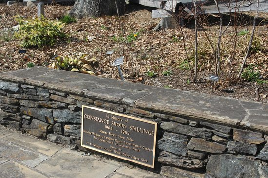 Daniel Boone Native Gardens: Some more history