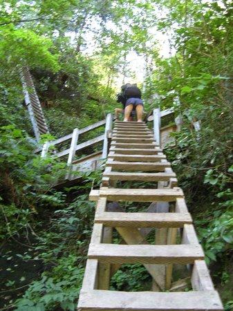 West Coast Trail: one of many