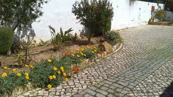 Quinta dos Caracois: Plants by pathway