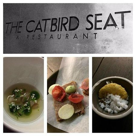 The Catbird Seat: A few courses.  Chilled razor clam broth with watercress, crispy pork tail and sea urchin