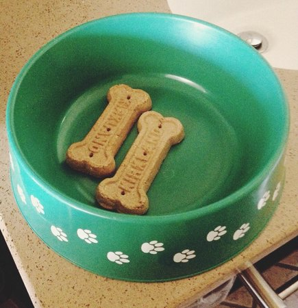 Bay Front Inn: Free dog water bowl with treats upon request