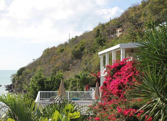 Sand Dollar Estate: Cottage - taken from the villa