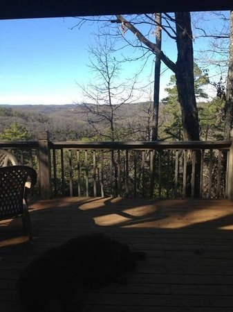 Cabin Fever Resort: our view from the deck