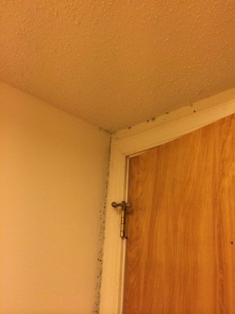 Summer Place Hotel: Moldy Door Frame