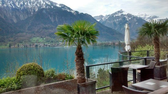 Hotel Brienzersee : Lake view