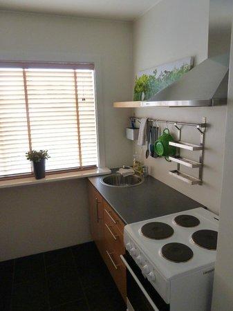 Snorri's Guesthouse : Küche