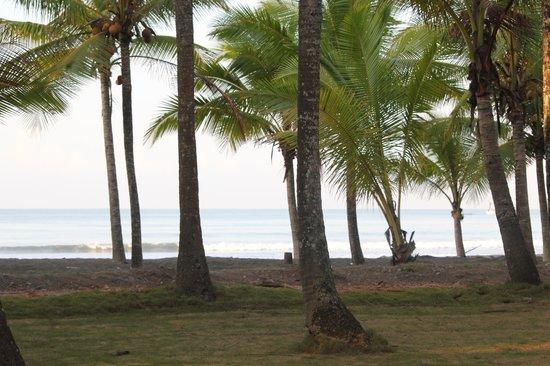 Hotel La Isla: Pretty beach but rough water