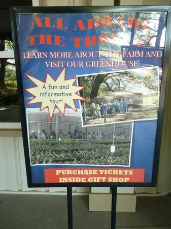 Charleston Tea Plantation: info sign