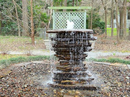 New Hanover County Arboretum: water feature