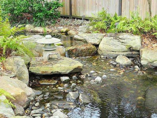 New Hanover County Arboretum: japanese garden