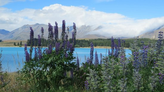 The Chalet Boutique Motel : Lake Tekapo