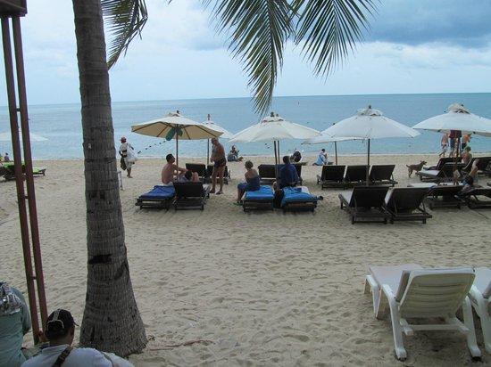 Thai House Beach Resort : Пляж отеля.