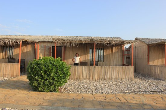 "The Turtle Beach Resort (Ras al Hadd) : Our beach ""hut""...."