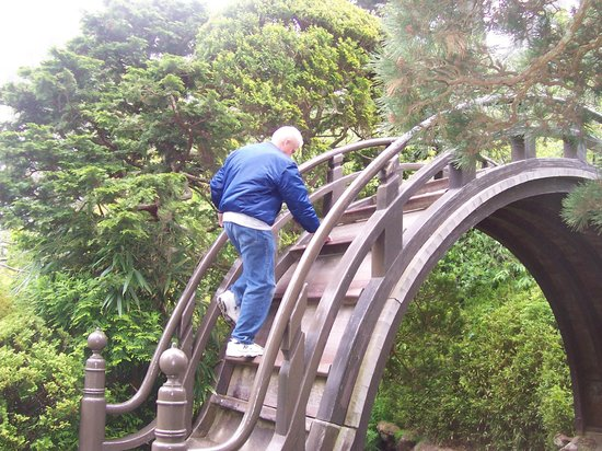Japanese Tea Garden: Taking the challenging climb