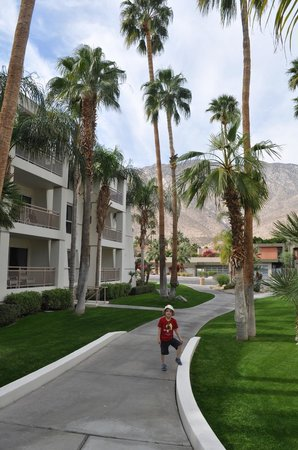 Palm Canyon Resort & Spa: we had a nice second floor one-bedroom suite