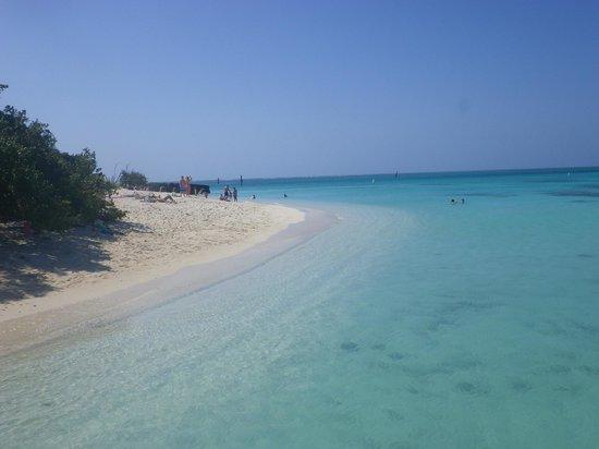 Yankee Freedom III: White sand beach!