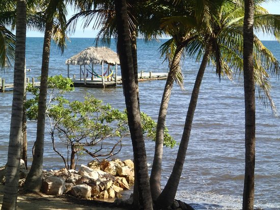 Pelican Beach - Dangriga: dock