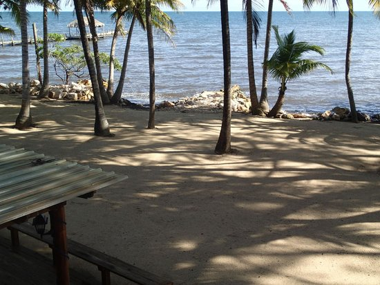 Pelican Beach - Dangriga: View from my (second) room