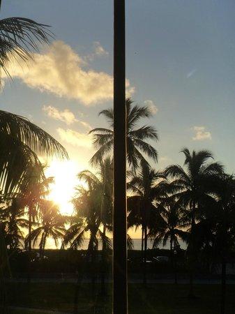 Ocean Blue Hostel : Vista do quarto