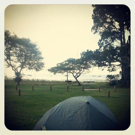 Straddie Camping: Unpowered site 1