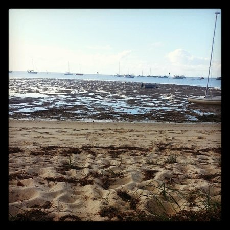 Straddie Camping: The beach near the unpowered sites