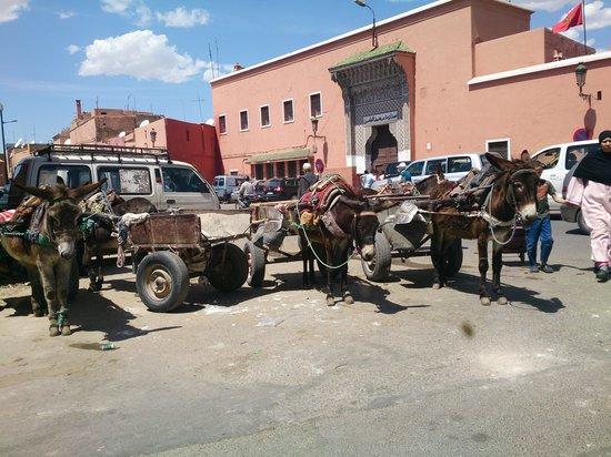 Riad Olema & Spa: barrio