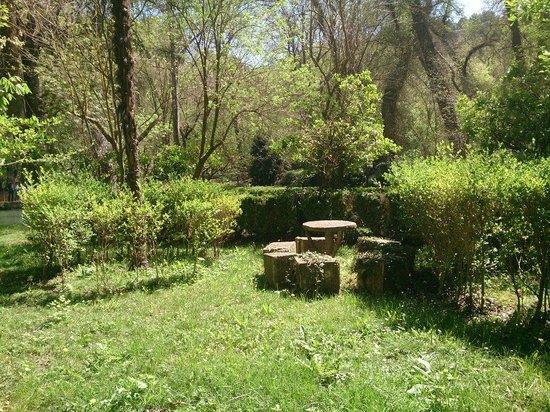 Monasterio de Piedra : Paisajes