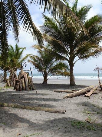 Cabanas Las Pigualas: Le Pacifique...
