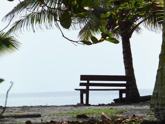 Cabanas Las Pigualas: La Plage