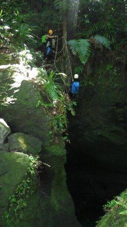 Canyon Speleo Caribbean: Titou Downstairs