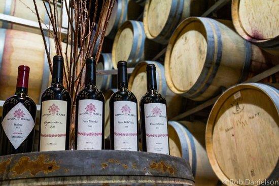 Gustavo Delucchi Wine Tours : Wine