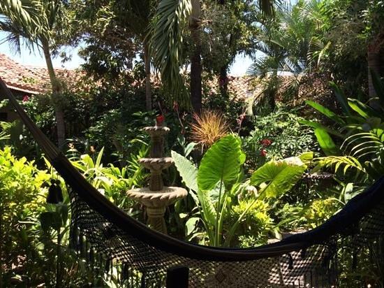 The Garden Cafe : garden