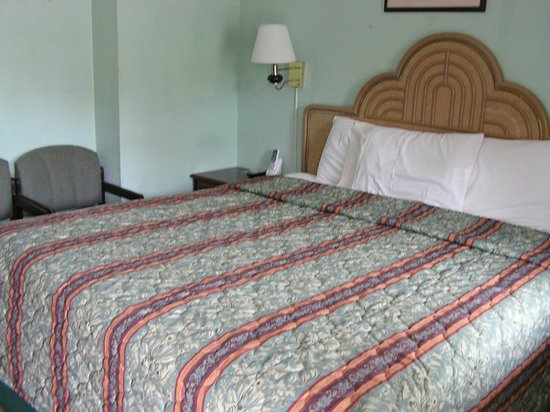 American Inn Motel: king bed