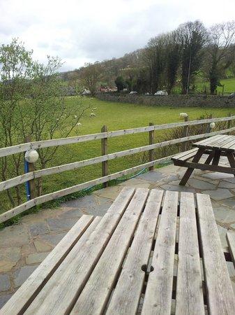 The Berwyn Arms : Terrace outside - great views