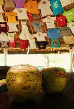 Coco Plum Island Resort : Yummy Coconuts