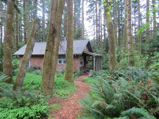 Port Orford, OR: our cabin