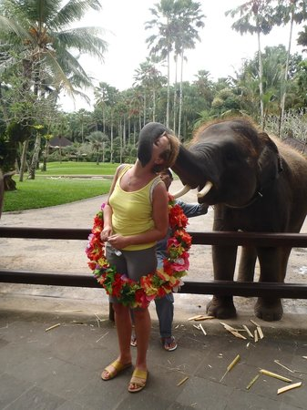 Elephant Safari Park & Lodge : Elephant Kisses are Special