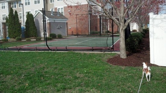 Residence Inn Salisbury : Tennis court
