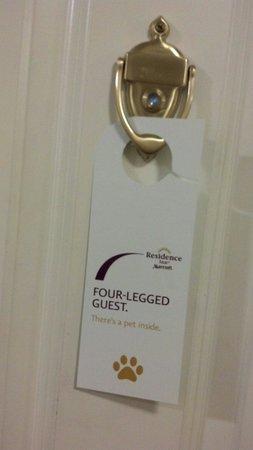 Residence Inn Salisbury : Petfriendly