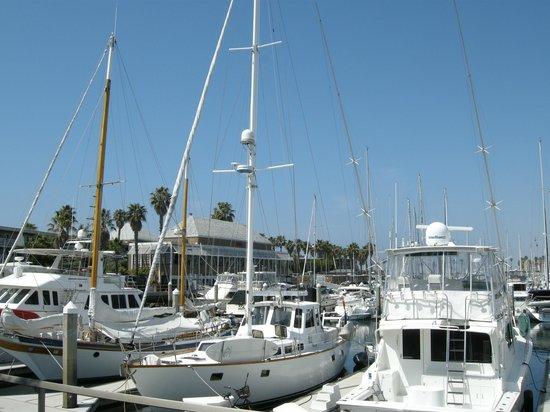 The Portofino Hotel & Marina, A Noble House Hotel: View of property restaurant Baleen