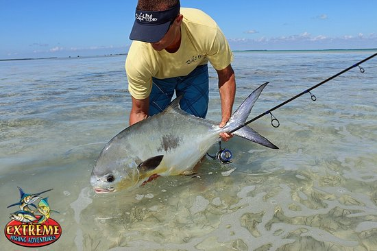Islamorada fishing picture of skins and fins fishing for Florida keys fishing guides