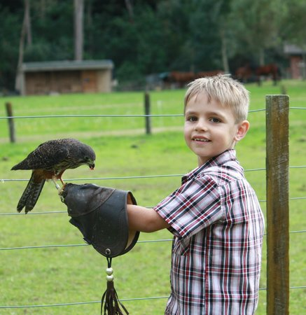 Wingspan National Bird of Prey Centre: 6year old blown away by his hands-on experience