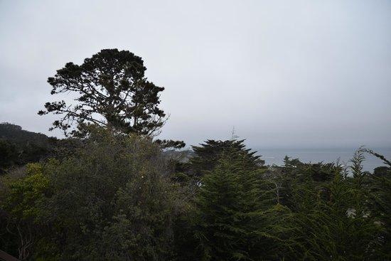 Hyatt Carmel Highlands: Room 519 Ocean View Left - Disappointing!