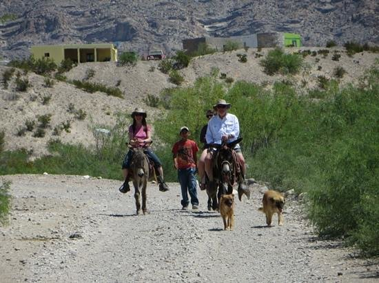 Big Bend National Park: Walk or take a donkey
