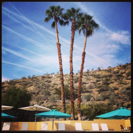 Best Western Inn at Palm Springs : Pool Area