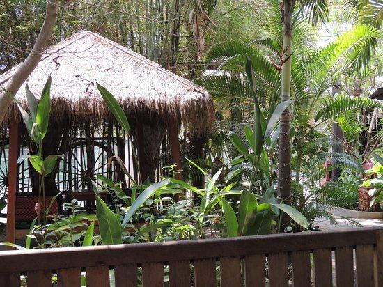 Golden Mango Inn : Entrada 1