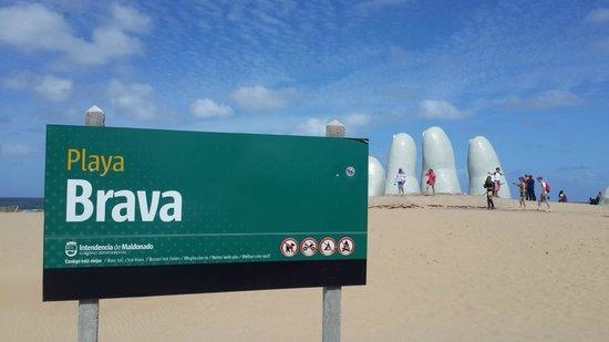 Los Dedos Playa Brava : Los Dedos de Punta del Este