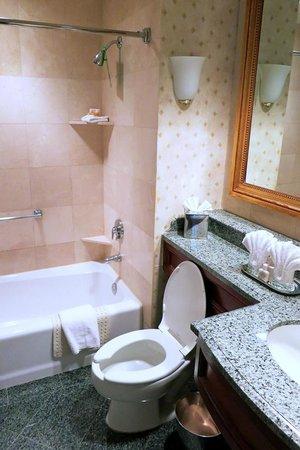 Hotel Monteleone: Room 368 Bathroom