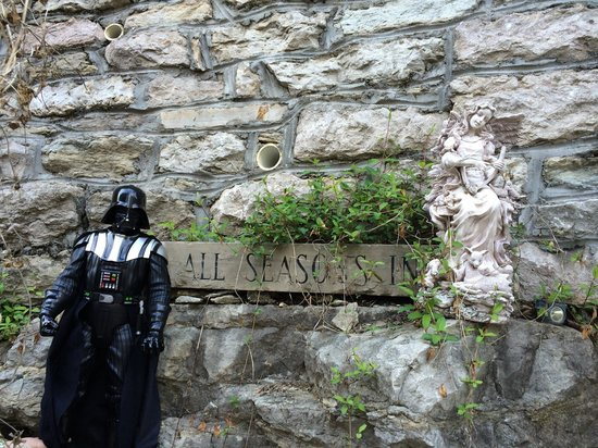 All Seasons Inn : Lil Vader approves