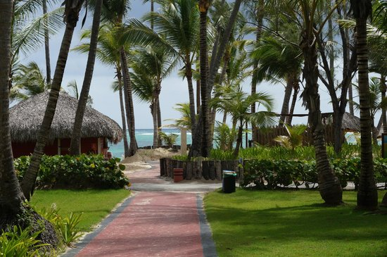 Grand Palladium Punta Cana Resort & Spa: View out of our room.